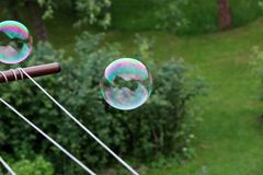 A colourful bubble flying in the air above garden and trying fly away. Bubble was created bubble blower in my hand stock photo