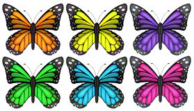 Colourful butterflies Royalty Free Stock Image