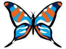Colourful butterfly Stock Photography