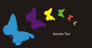 Colourful butterflys Stock Images