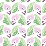 Colourful Calla Lilies Pattern Stock Images