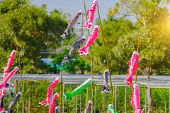 Colourful carp streamers or Koinobori flutter Stock Image