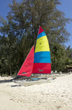 Colourful catamaran on beach, Phuket, Thailand Stock Images
