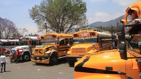 Colourful chicken buses in Antigua Guatemala city. ANTIGUA, GUATEMALA - MARCH 28, 2016: Colourful chicken buses, former US school buses, are lined up at the main stock video footage