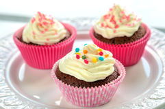 Colourful Chocolate Cupcakes Royalty Free Stock Photo
