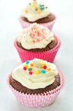 Colourful Chocolate Cupcakes Stock Images