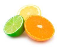 Colourful citrus slices. Three halves of a lime, mandarine (orange) and lemon isolated on white background Stock Photos