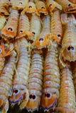 Colourful crustaceans Stock Photos