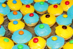 Colourful cup cakes Royalty Free Stock Photo