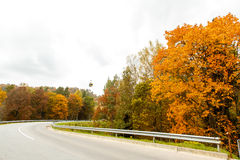 A colourful curving autumn road. In overcast day royalty free stock image