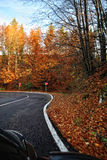 A colourful curving autumn road Royalty Free Stock Photos