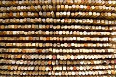 Colourful Cut Sticks Stock Photo