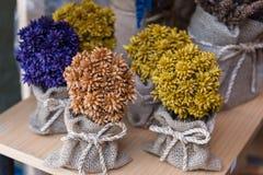 Colourful del fiore secco immagine stock libera da diritti
