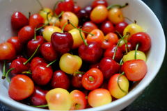 Colourful delicious cherry in white plate royalty free stock image