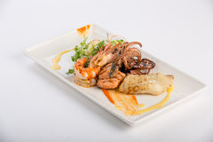 Colourful dish Stock Photography