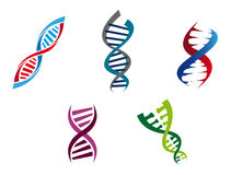 Colourful DNA strands Royalty Free Stock Photo