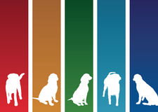 Colourful dog banners. A set of colourful dog banners Stock Photos