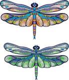 Colourful dragonfly Obraz Stock
