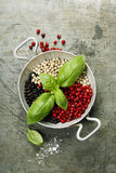 Colourful dried pepper mix and basil Stock Images