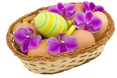 Colourful Easter Eggs Stock Photos