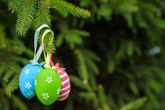 Colourful Easter eggs on Christmas tree Royalty Free Stock Images