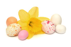 Colourful easter eggs and a  daffodil Royalty Free Stock Photo