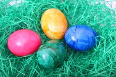 Colourful eggs Stock Images
