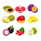 Colourful Exotic Tropical Fruits Set Stock Image