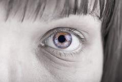Colourful Eye Royalty Free Stock Image