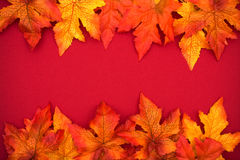 Colourful Fall Background Frame Royalty Free Stock Photography