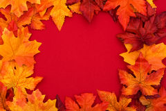 Colourful Fall Background Frame Royalty Free Stock Image