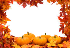 Colourful Fall Background Frame Stock Images