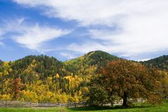 Colourful fall landscape Royalty Free Stock Image