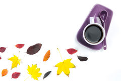Colourful fall leaves and Purple coffee cup with saucer, spoon isolated on white background Royalty Free Stock Photo