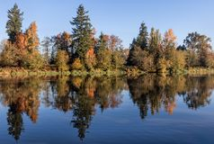 Colourful Fall Reflections in Water royalty free stock photos