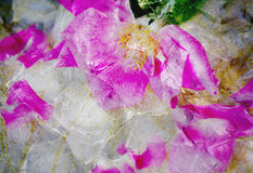 Colourful fantasy Ice with Rose soft pink blur . Royalty Free Stock Photo