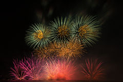 A colourful of firework. In black background Royalty Free Stock Photography