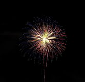 Colourful of firework Royalty Free Stock Photography