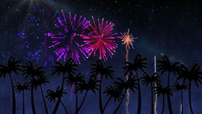 Colourful fireworks over palm trees stock video