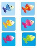Colourful fish Royalty Free Stock Photography