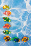 Colourful Fish Border Stock Photography