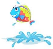 A colourful fish Stock Photos