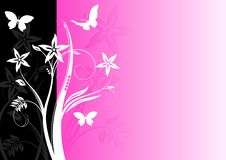 Colourful floral background Stock Photo