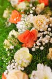 Colourful flower background Royalty Free Stock Photography