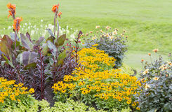 Colourful Flower Beds Stock Photography