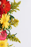 Colourful flower boarder Royalty Free Stock Photos