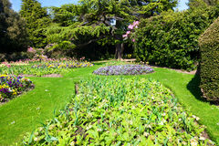 Colourful Flowerbeds Stock Photography