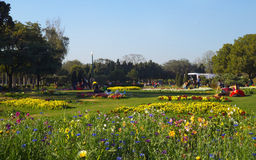Colourful flowerbeds at Nehru Park, New Delhi. During Spring season. People are seen enjoying their weekend in serene surroundings stock images
