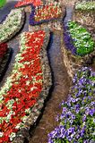 Colourful flowerbeds with pathways. Royalty Free Stock Image