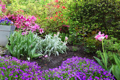 Colourful Flowerbeds. In Spring Garden stock photo